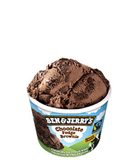 Chocolate Fudge Brownie Original Ice Cream Mini Cup