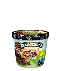 Chocolate Fudge Brownie Non-Dairy Frozen Dessert Mini Cup