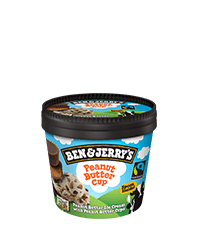 Peanut Butter Cup Original Ice Cream Mini Cup